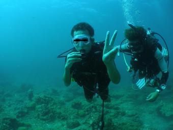Diving_c.jpg